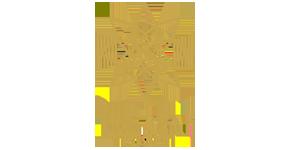 The Star Logo